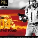 Die gesuchte Website ist in der Gewalt von Chuck Norris!